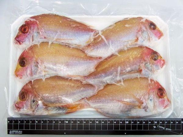【売切】焼き鯛用に鱗内臓処理済★長崎産連子鯛(6尾)6尾パックのサムネイル