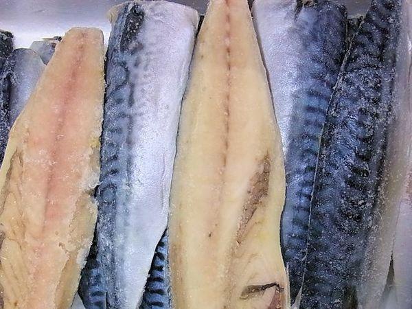 ノルウェー産 塩鯖フィーレ 5kg/36枚(1枚約139g)