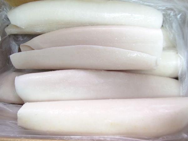 ペルー産 ロールイカ 8本(5㎏)のサムネイル