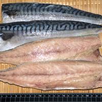 ノルウェー産 真鯖フィーレ 5kg/30枚(約1枚165g)※腹骨取りのサムネイル